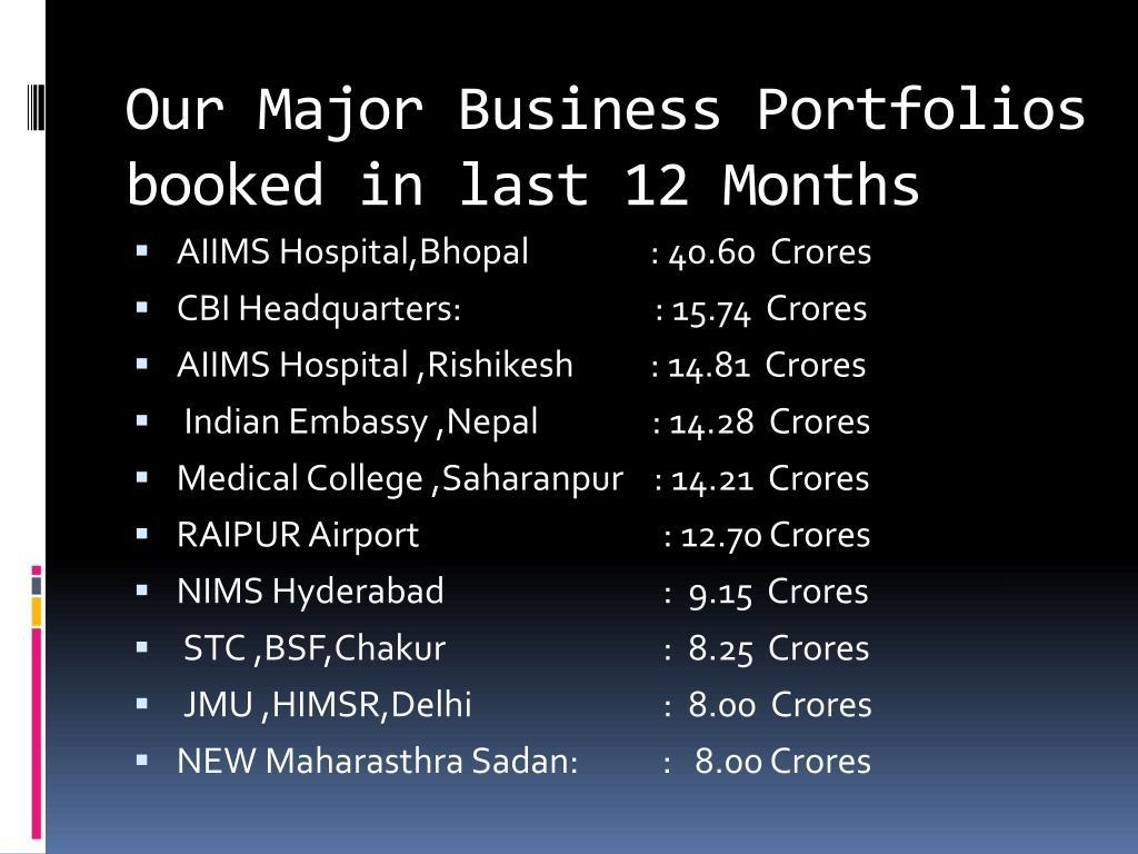 Our Major Business Portfolios