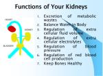 functions of your kidneys