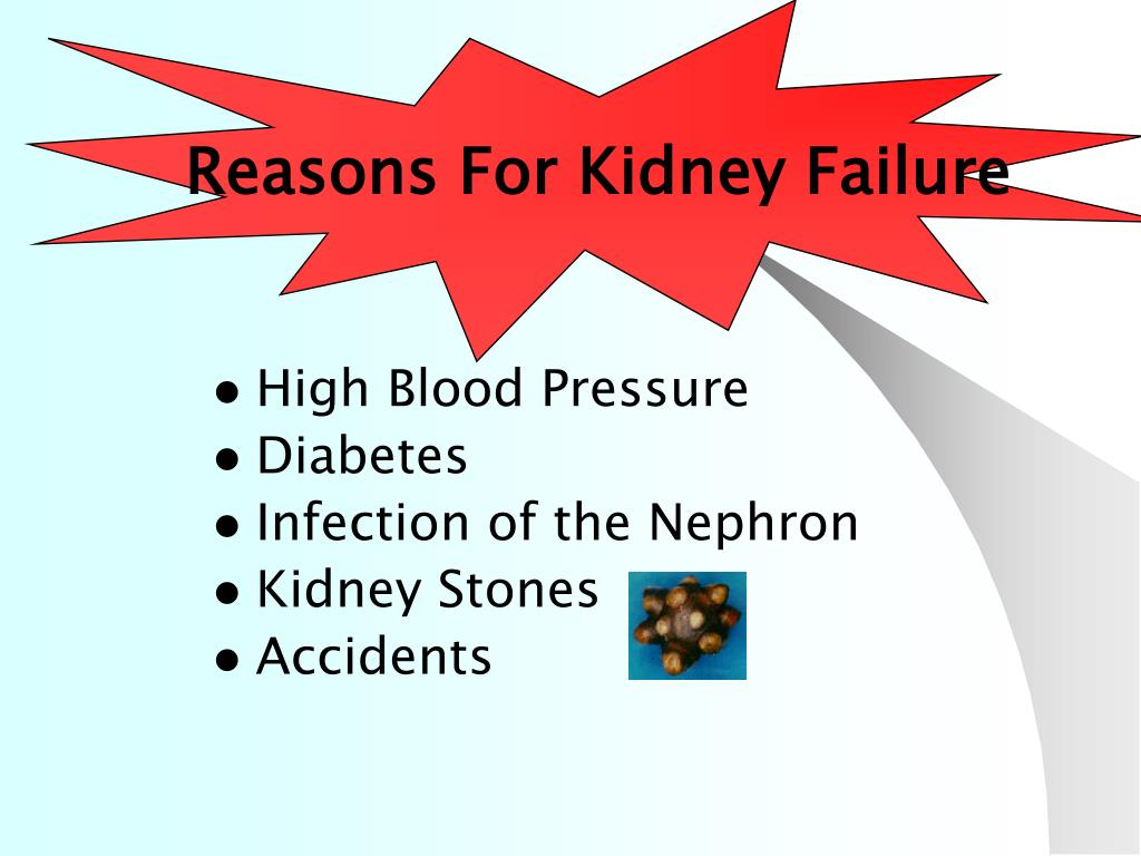 Reasons For Kidney Failure