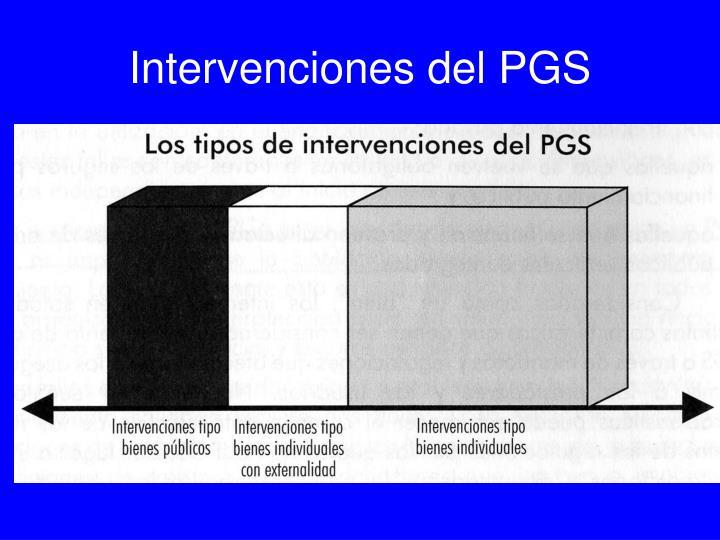Intervenciones del PGS