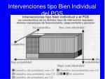 intervenciones tipo bien individual del pgs