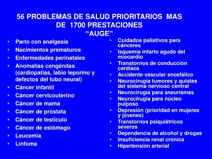 """56 PROBLEMAS DE SALUD PRIORITARIOS  MAS DE  1700 PRESTACIONES                                                           """"AUGE"""""""