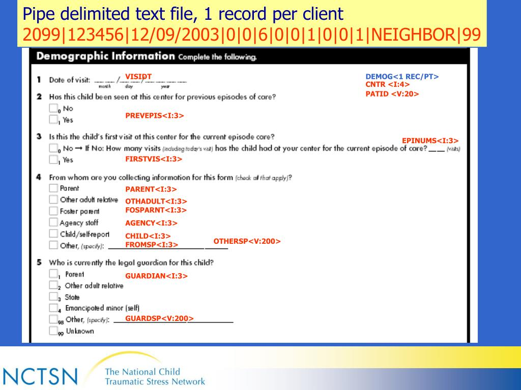 Pipe delimited text file, 1 record per client