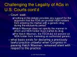 challenging the legality of ags in u s courts cont d