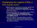 challenging the legality of ags in u s courts cont d7