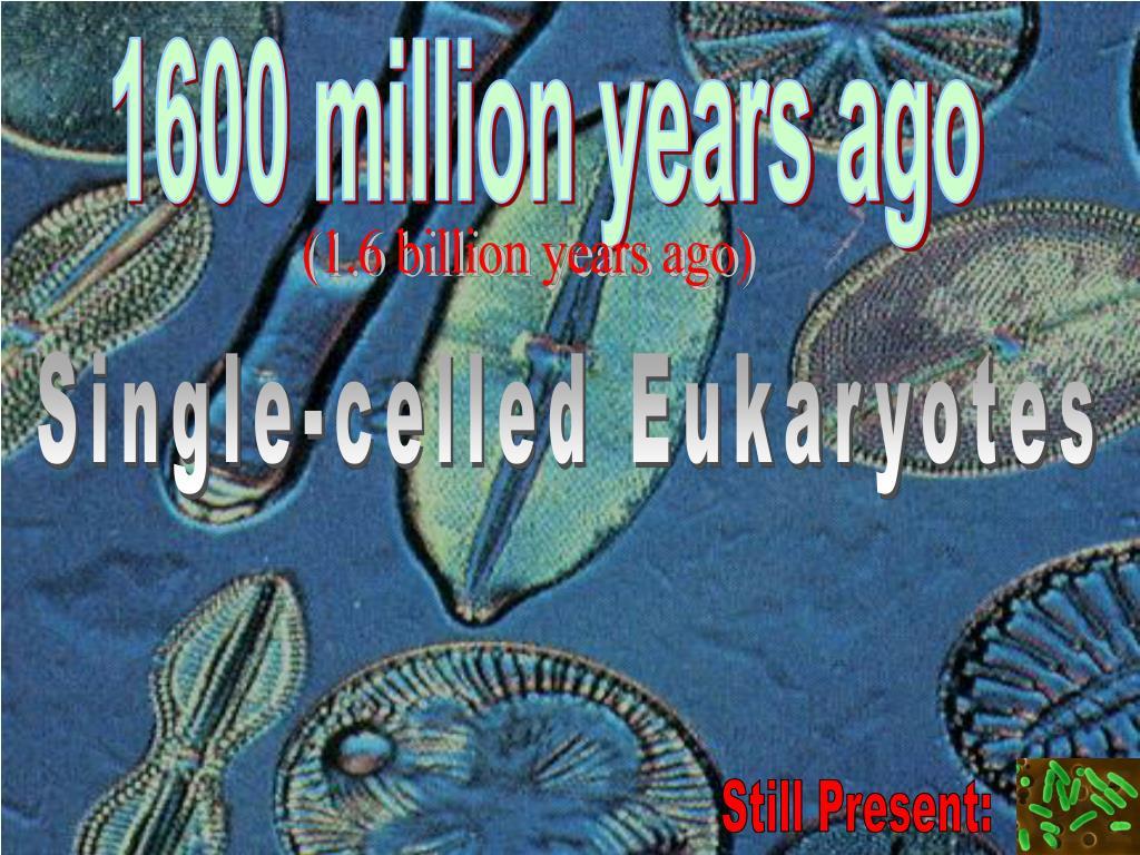 1600 million years ago
