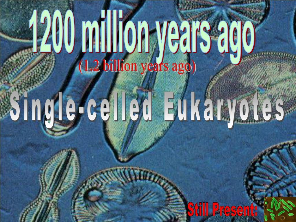 1200 million years ago