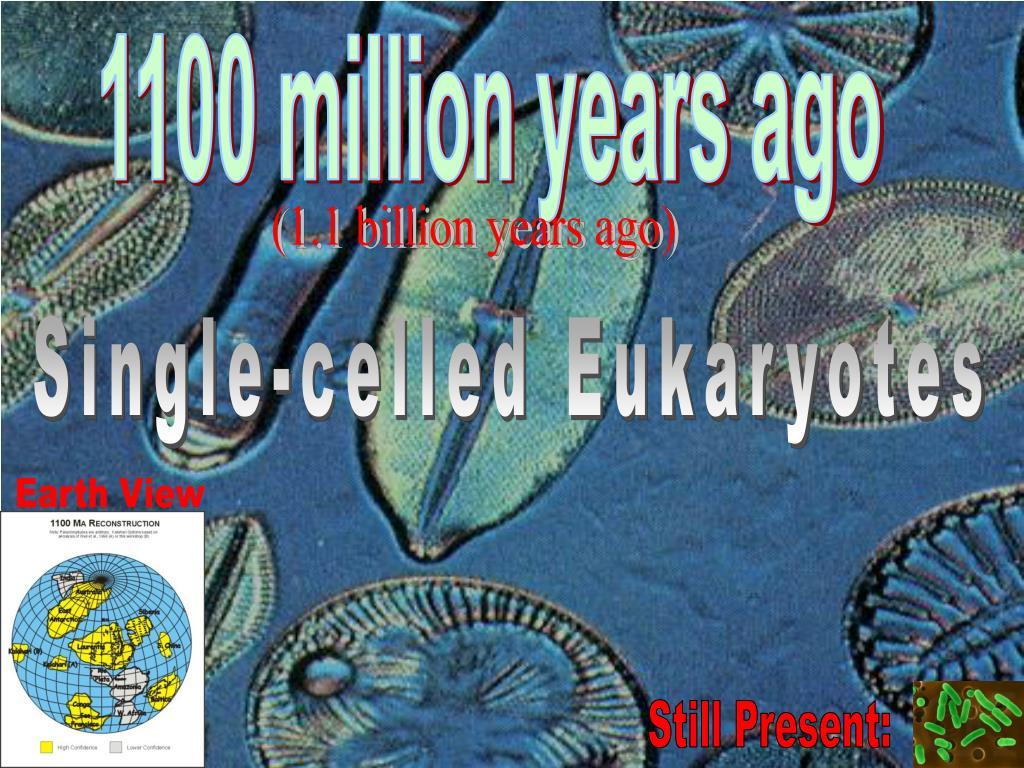 1100 million years ago