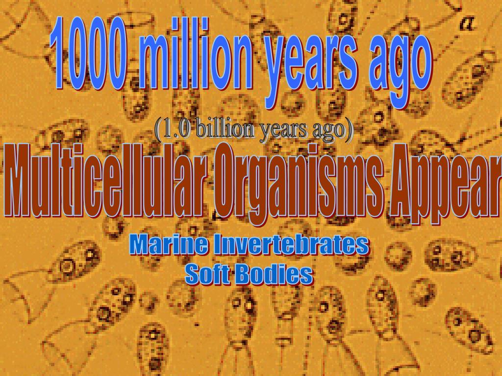 1000 million years ago