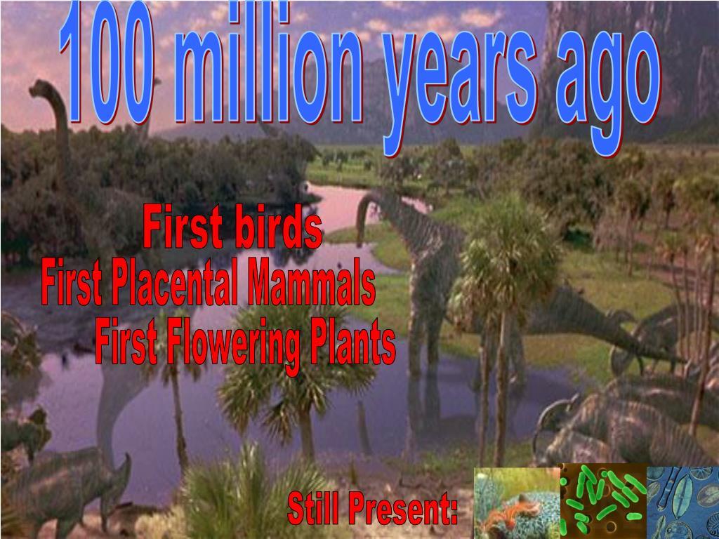 100 million years ago