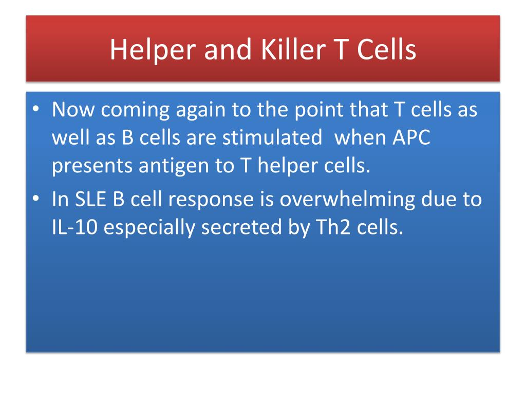 Helper and Killer T Cells