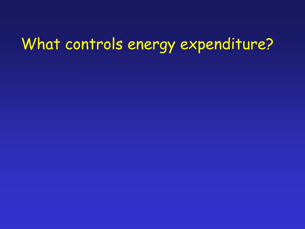 What controls energy expenditure?