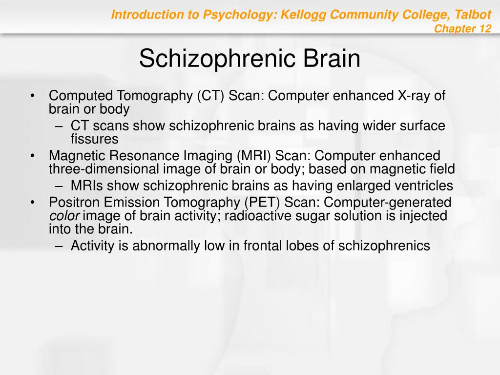 Schizophrenic Brain