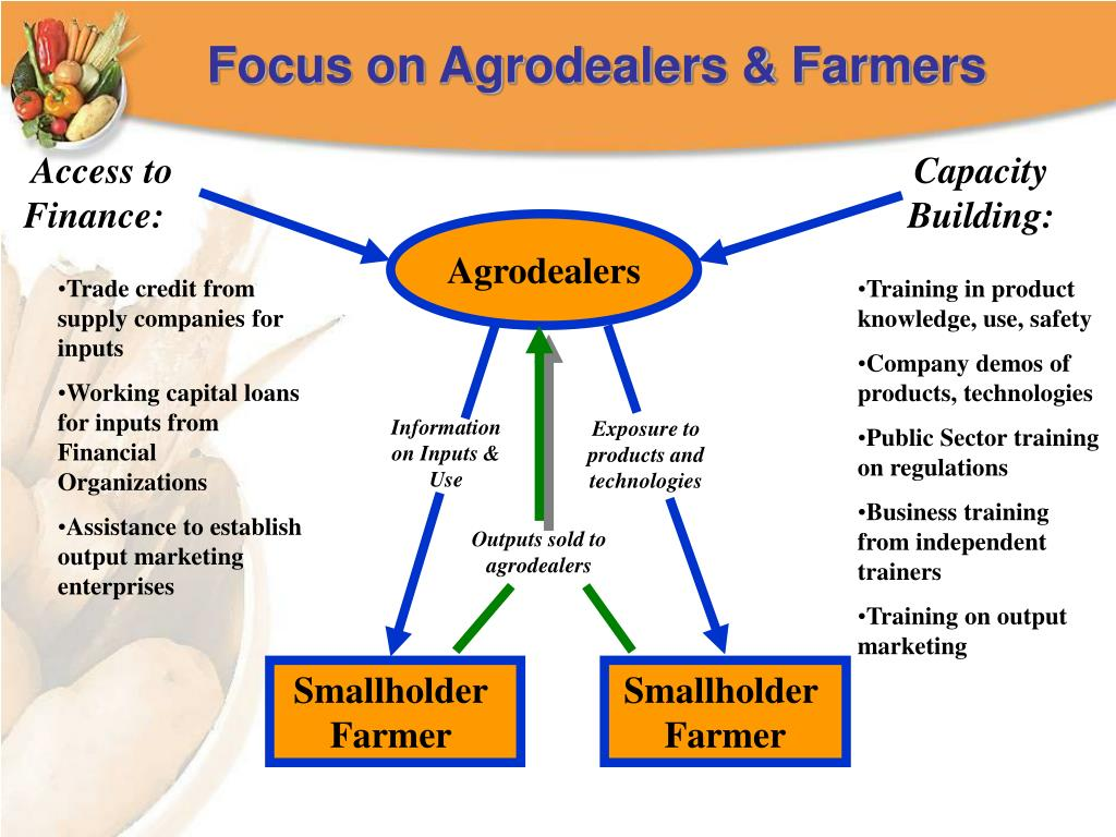 Focus on Agrodealers & Farmers