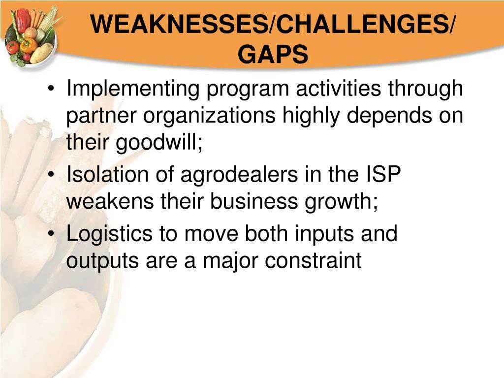WEAKNESSES/CHALLENGES/GAPS