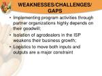 weaknesses challenges gaps