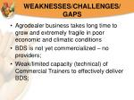 weaknesses challenges gaps20