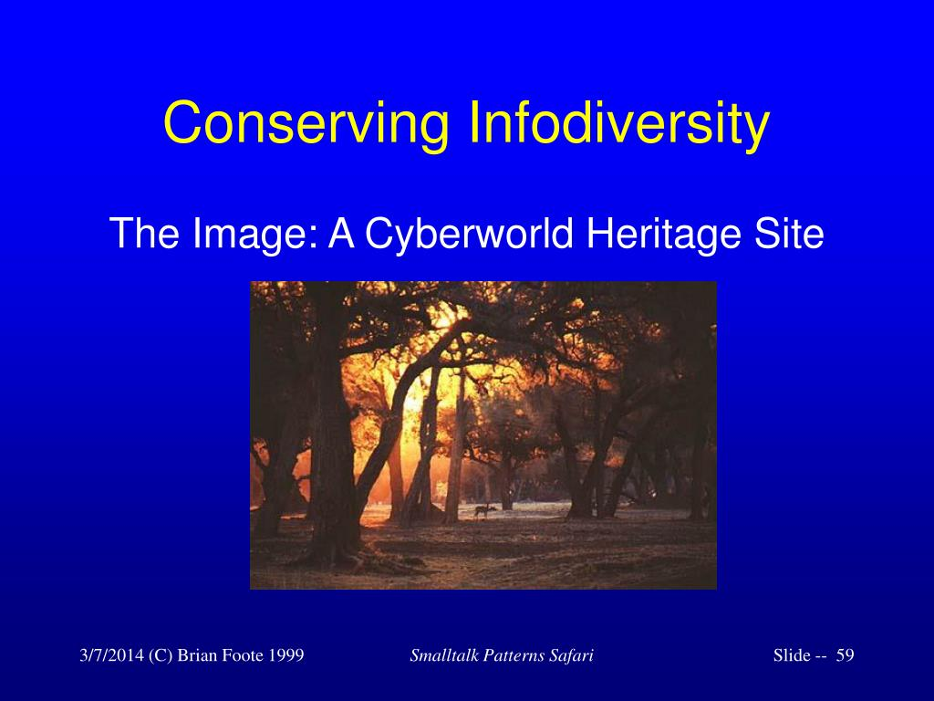 Conserving Infodiversity