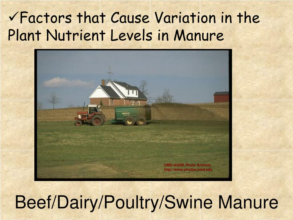 Factors that Cause Variation in the Plant Nutrient Levels in Manure
