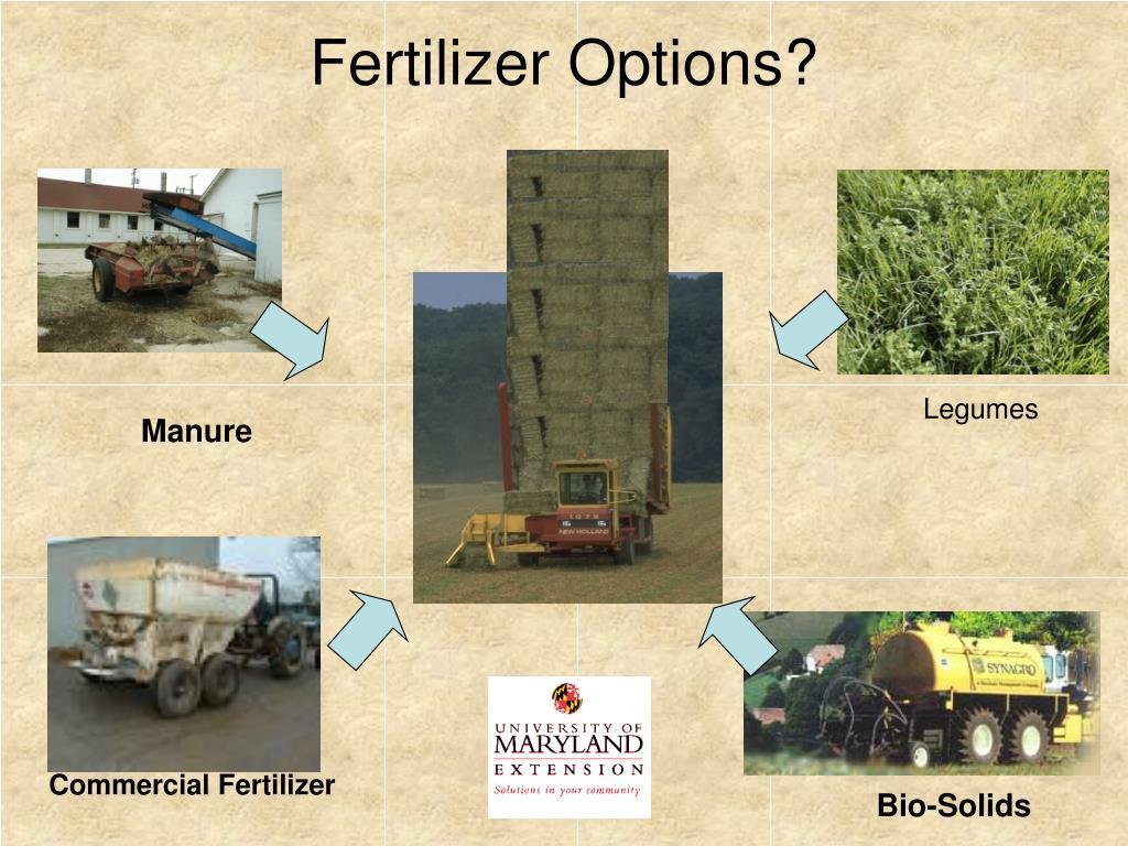Fertilizer Options?