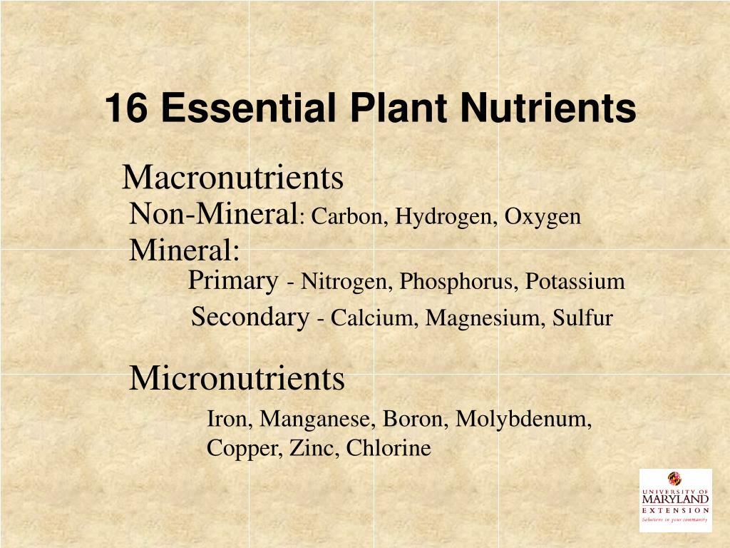 16 Essential Plant Nutrients