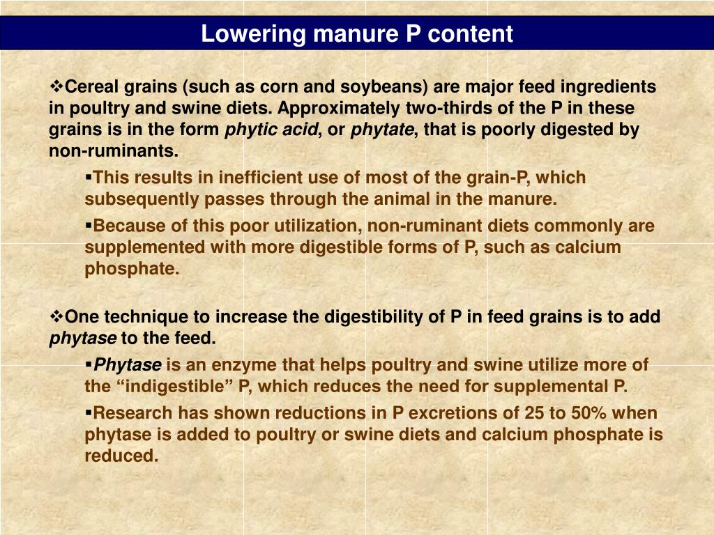 Lowering manure P content