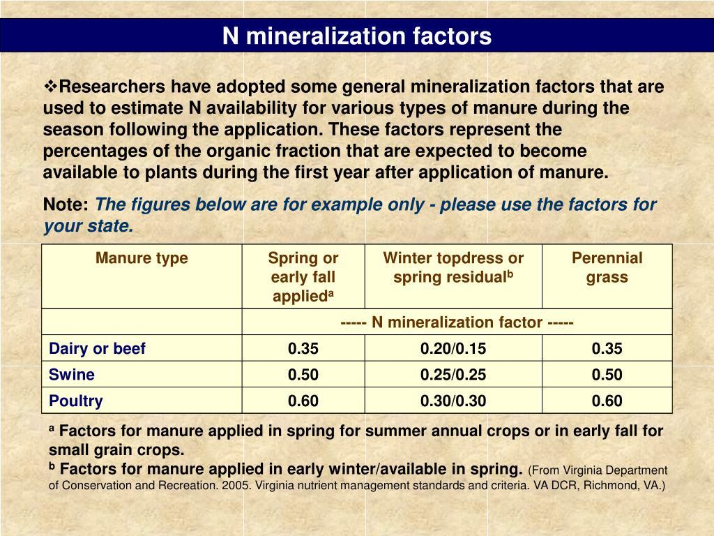 N mineralization factors