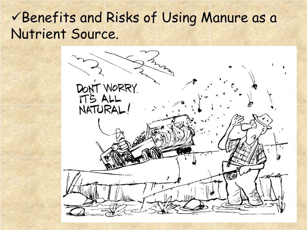 Benefits and Risks of Using Manure as a Nutrient Source.