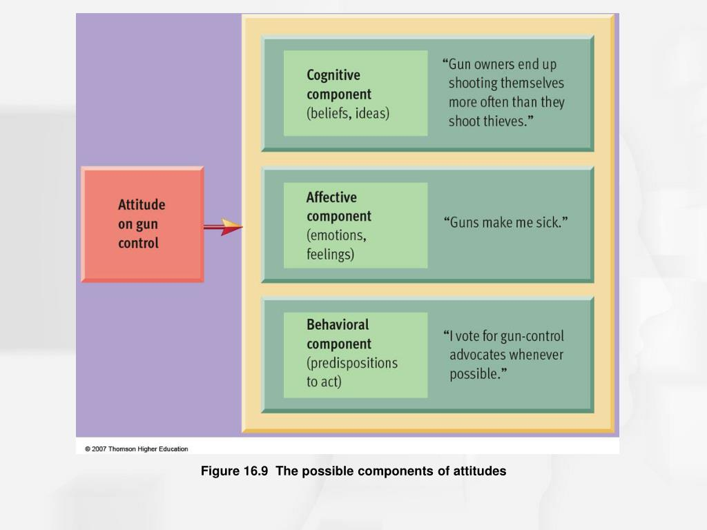 Figure 16.9  The possible components of attitudes