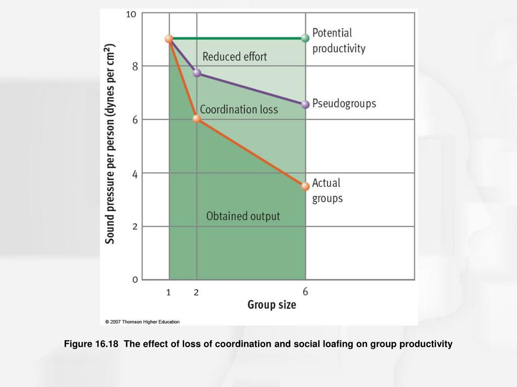 Figure 16.18  The effect of loss of coordination and social loafing on group productivity