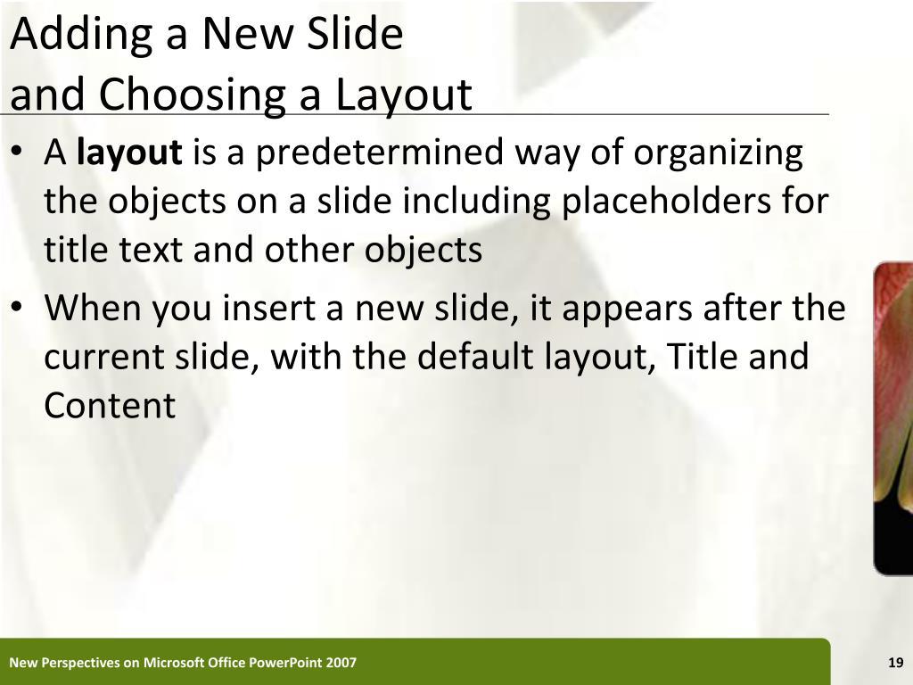 Adding a New Slide