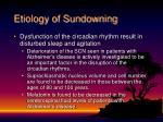 etiology of sundowning