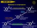 metabolism of norepinephrine