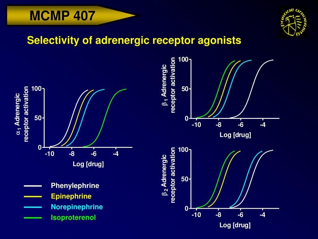 Selectivity of adrenergic receptor agonists