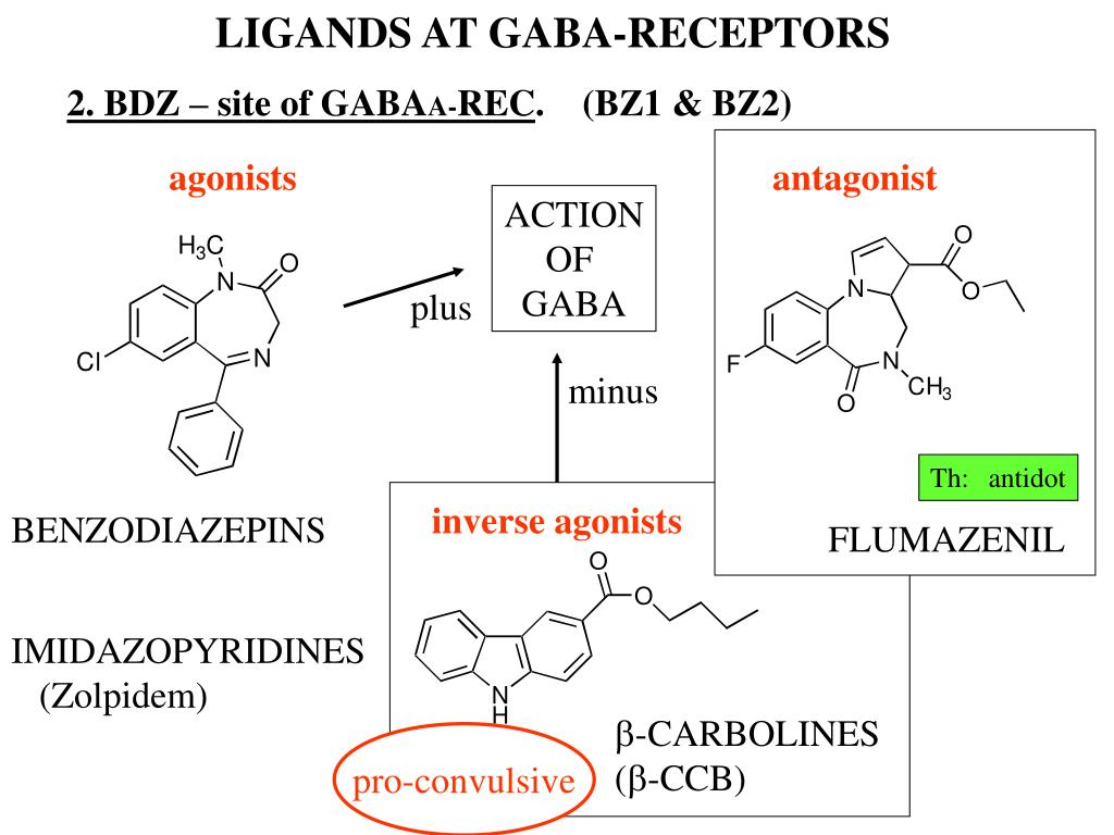 LIGANDS AT GABA-RECEPTORS