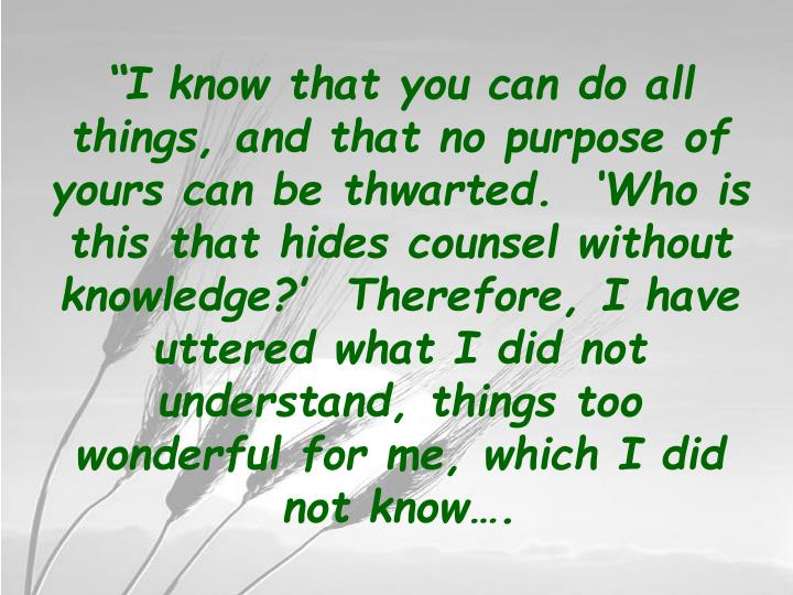 """""""I know that you can do all things, and that no purpose of yours can be thwarted.  'Who is this that hides counsel without knowledge?'  Therefore, I have uttered what I did not understand, things too wonderful for me, which I did not know…."""