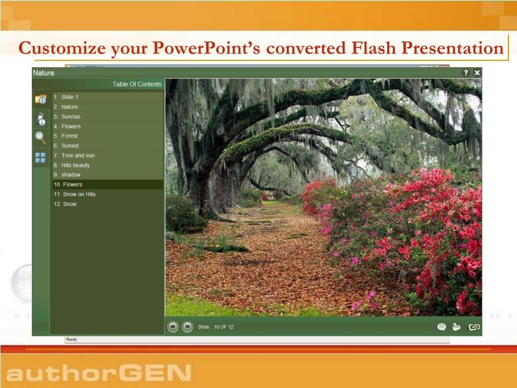 Customize your PowerPoint's converted Flash Presentation