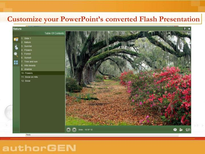 Customize your powerpoint s converted flash presentation
