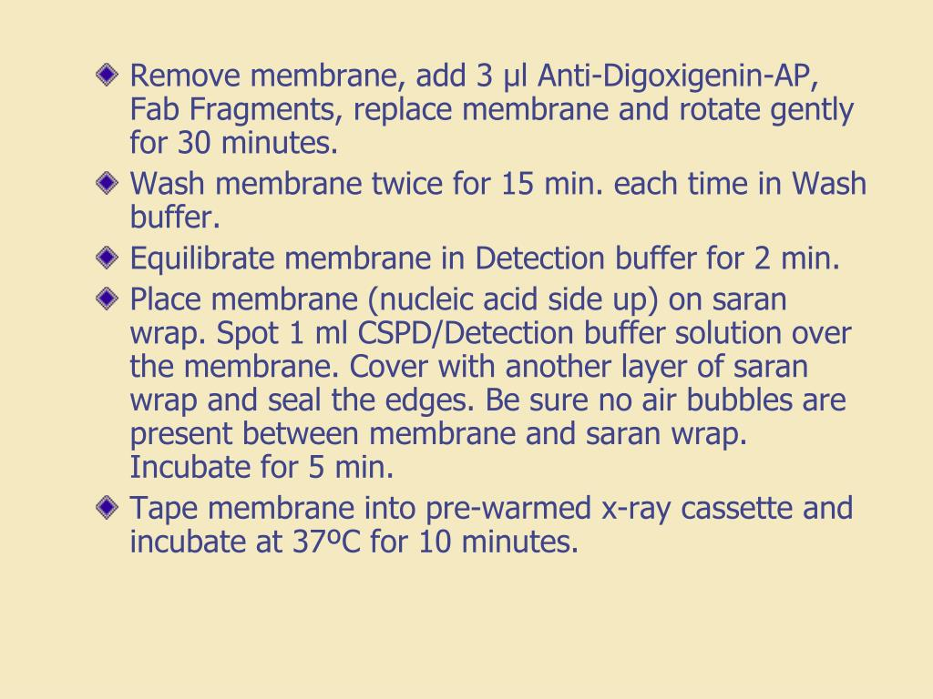 Remove membrane, add 3