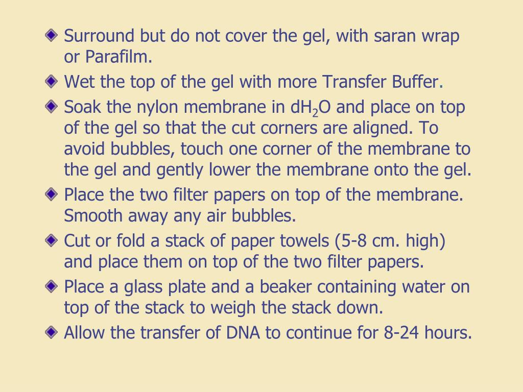 Surround but do not cover the gel, with saran wrap or Parafilm.