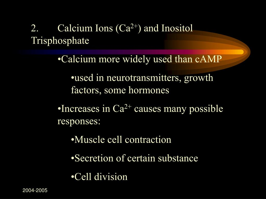 2.Calcium Ions (Ca