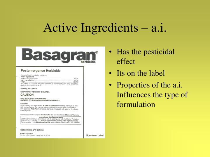 Active Ingredients – a.i.