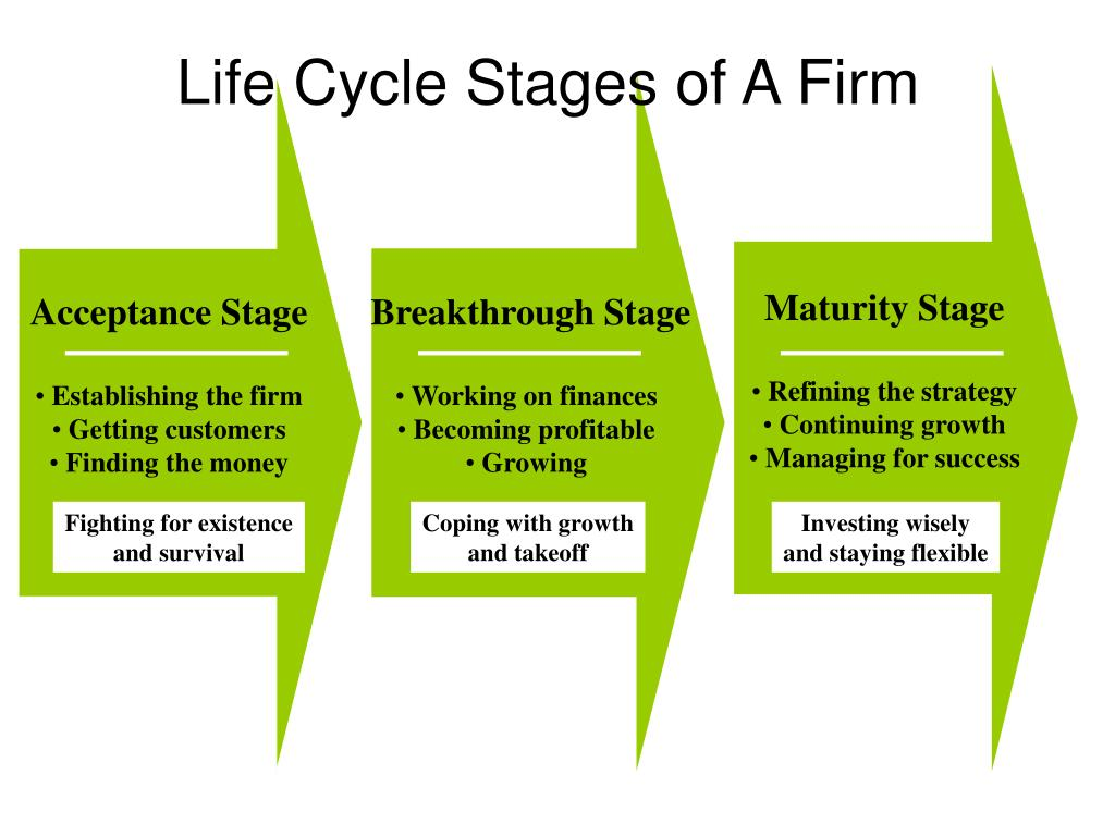 Life Cycle Stages of A Firm