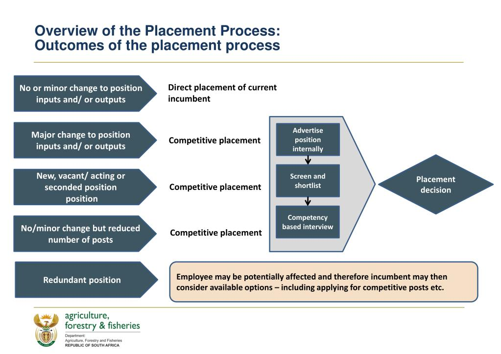 Overview of the Placement Process: