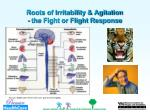 roots of irritability agitation the fight or flight response