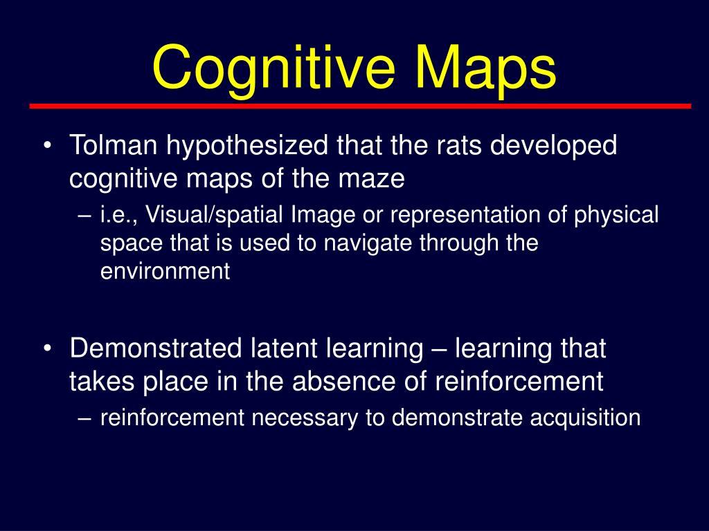 Cognitive Maps