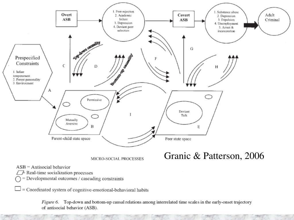 Granic & Patterson, 2006