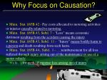 why focus on causation