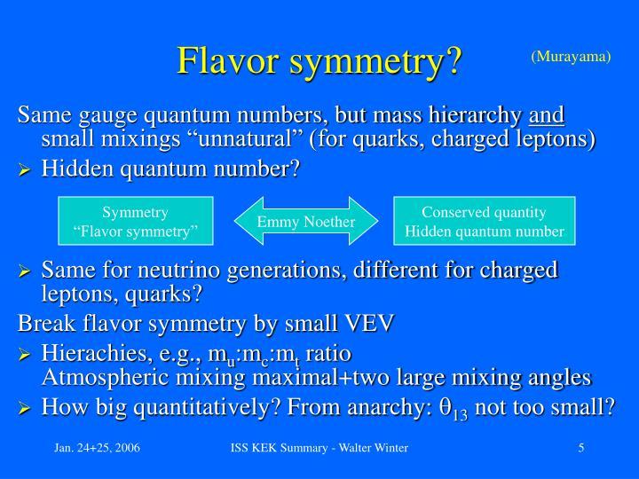 Flavor symmetry?