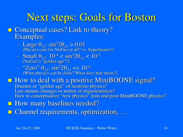Next steps: Goals for Boston
